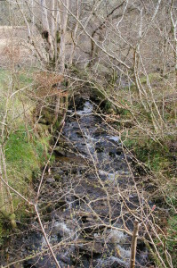 By the old farm of Garvalt, a burn flows swiftly over its rocky bed.  The name is Gaelic, garbh allt, 'rough burn'.