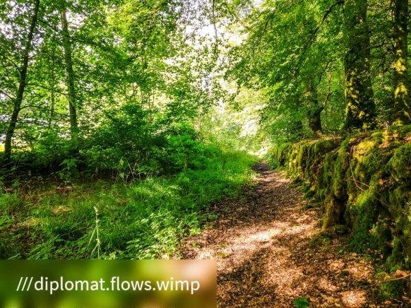 Faith in Cowal ©subtlesensor2020-105