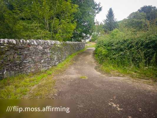 FinC-St-Modan-Trail ©subtlesensor2020 (1 of 30)