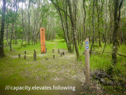 FinC-St-Modan-Trail ©subtlesensor2020 (8 of 30)