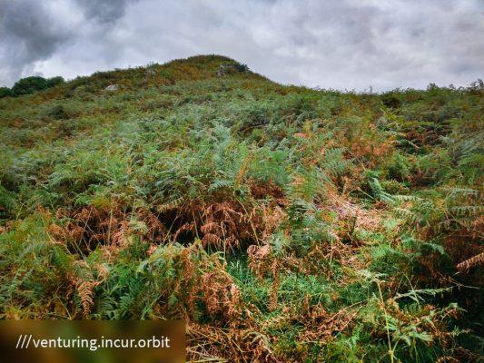 FinC_Kilmorie - Kilbride Loop (14 of 50)