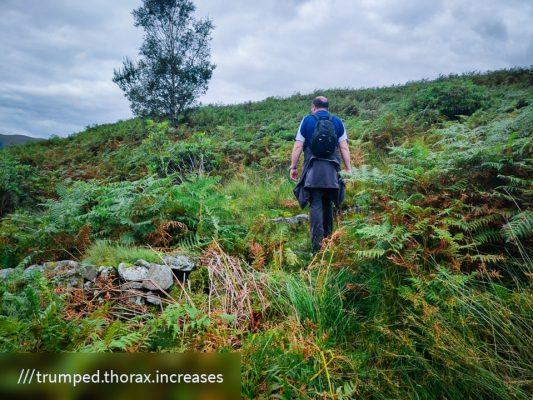FinC_Kilmorie - Kilbride Loop (21 of 50)