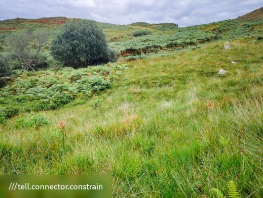 FinC_Kilmorie - Kilbride Loop (28 of 50)