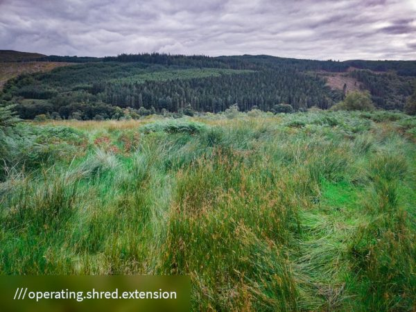 FinC_Kilmorie - Kilbride Loop (41 of 50)