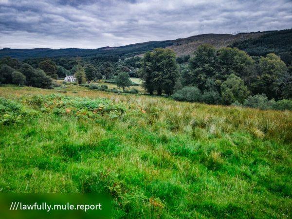 FinC_Kilmorie - Kilbride Loop (43 of 50)