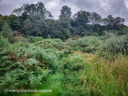 FinC_Kilmorie - Kilbride Loop (7 of 50)