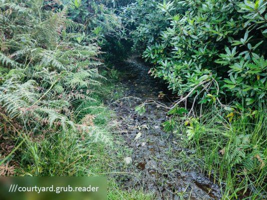 FinC_Kilmorie - Kilbride Loop (8 of 50)