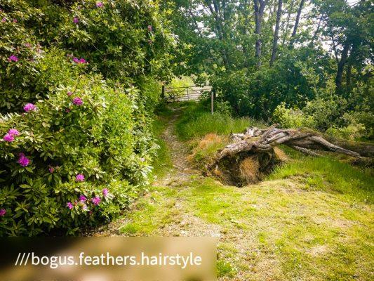 Kilmun - Lochgoilhead_1590489807496 - Faith in Cowal ©subtlesensor2020