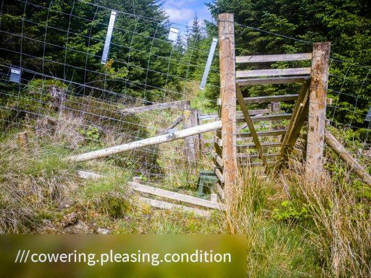 Kilmun - Lochgoilhead_1590497697082 - Faith in Cowal ©subtlesensor2020