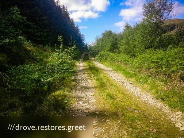 Kilmun - Lochgoilhead_1590499253030 - Faith in Cowal ©subtlesensor2020
