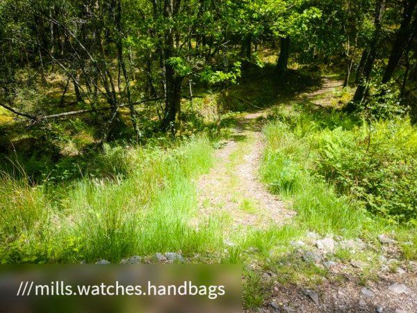 Kilmun - Lochgoilhead_1590670559043 - Faith in Cowal ©subtlesensor2020