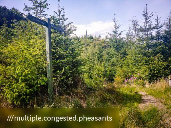 Kilmun - Lochgoilhead_1590676107823 - Faith in Cowal ©subtlesensor2020